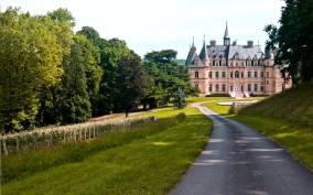 From Paris: Champagne Trip & Tasting at Nicolas Feuillatte