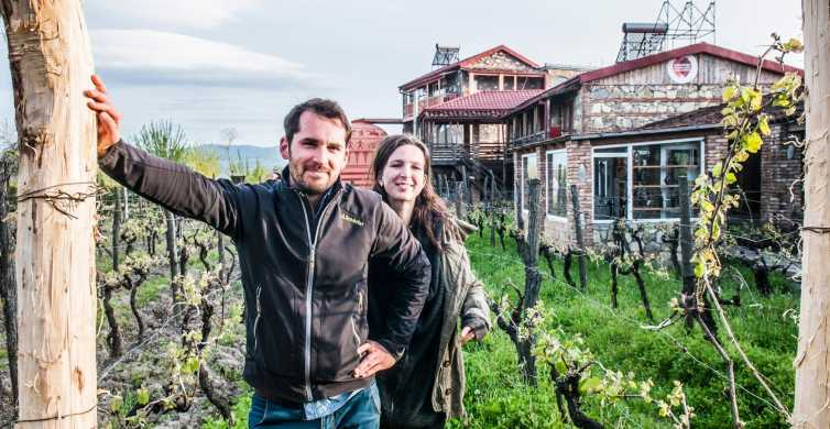 From Tbilisi: Wine Tasting Tour and Lunch in Kakheti