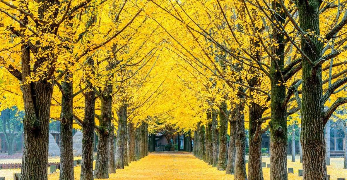 Namiseom, Petite France, Garden of Morning Calm