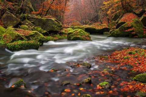 Bohemian Switzerland: Private Day Trip from Prague