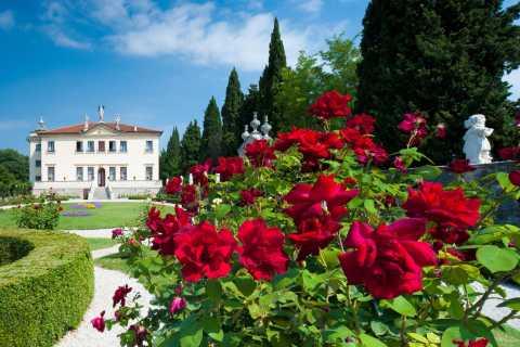 Villa Valmarana e affreschi di Tiepolo: biglietto d'ingresso