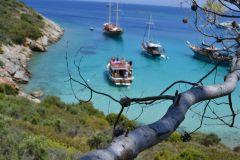 Viagem de barco de dia inteiro para a Ilha de Orak saindo de Bodrum