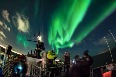 Reykjavik: 2-Hour Northern Lights by Boat with Backup Plan