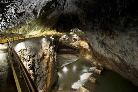 Ljubljana: Private Tour to Škocjan Caves & Lipica Stud Farm