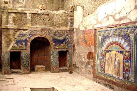 Herculaneum and Mt. Vesuvius Full-Day Excursion from Naples