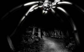 Franfurt Horror Tour: Terror of the White Spider