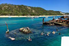 Ilha Moreton: Cruzeiro de Aventura com Golfinhos e Snorkel