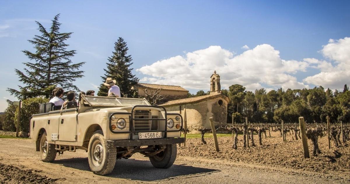 Barcelona Wine, Cava and Tapas 4WD Vineyard Tour