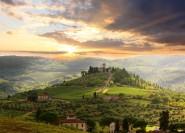 Ab Florenz: Private Weintour mit Abendessen auf Weingut