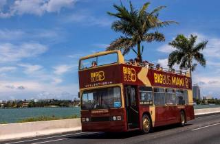 Miami: Bustour & optionale Bootsfahrt & Everglades-Show