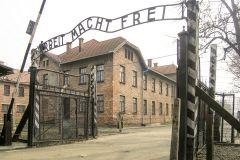 De Cracóvia: Visita e Transporte a Auschwitz-Birkenau