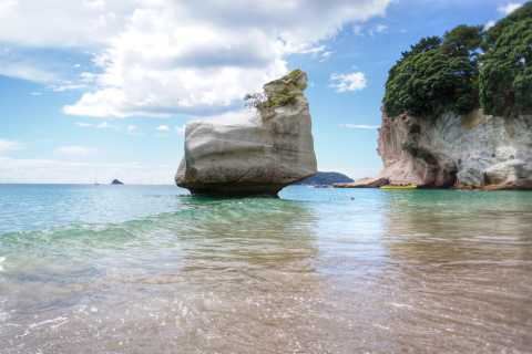 Ab Coromandel: Cathedral Cove & Hot Water Beach Tagestour