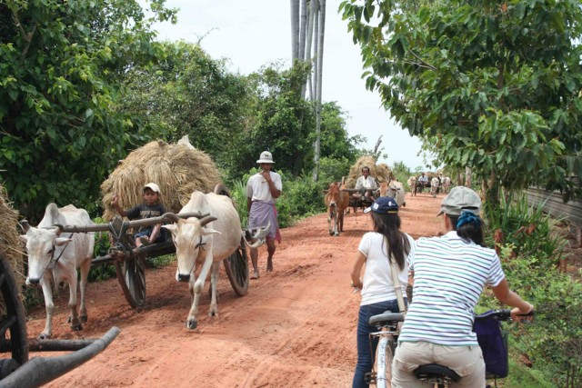 From Siem Reap: Half-Day Countryside Bicycle Tour