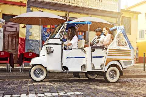 Funchal: 75–Minute City Tour in a Tukxi