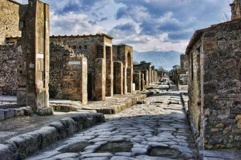 Pompeii and Herculaneum: Private Tour from Naples