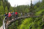 Vancouver City and Capilano Park Private Tour