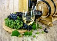 Von Neapel: halbtägige Vesuv-Weintour mit Mittagessen