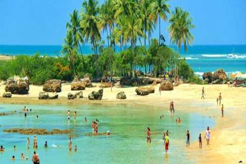 From Salvador: Morro de São Paulo Paradise Island Daytrip