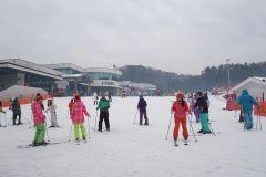 Seul: Jisan Resort Ski, trenó e dia de neve