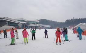 Seoul: Jisan Resort Ski, Sled and Snow Day