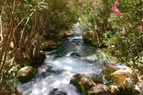 From Benidorm: Afternoon Trip to Algar Waterfalls