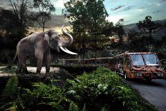 Night Safari c/ Bilhete Prioritário de Bonde e Traslados