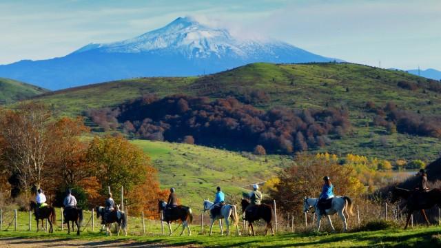 Sicilië: paardrijden en boerderijtour met lunch
