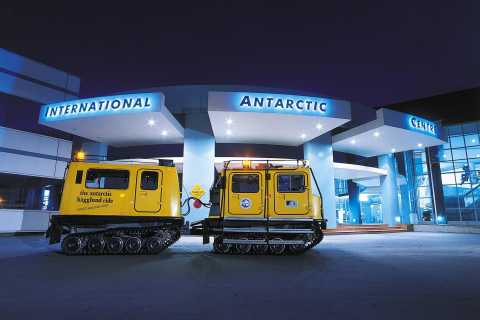 City Sightseeing Tour with International Antarctic Centre
