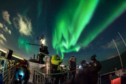 Reikiavik: auroras Boreales en barco