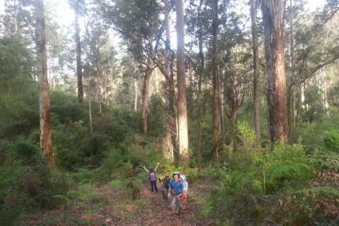Albany: Guided Granite Skywalk in Porongurup National Park