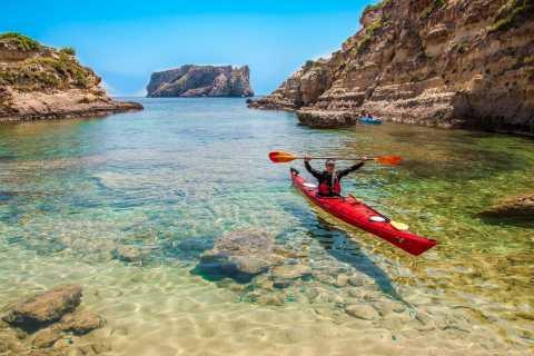Bahía de Navarino: kayak de mar con almuerzo