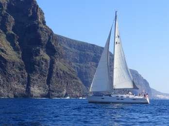Los Gigantes: Walbeobachtungs-Tour mit Segelboot