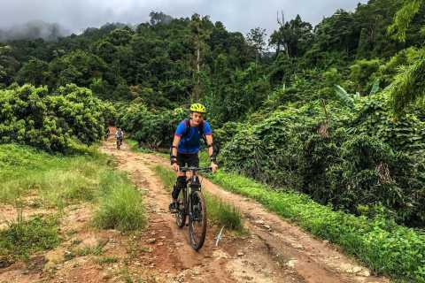 Full Day Hike & Bike at Doi Suthep Mountain National Park