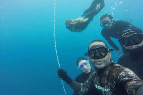 Tenerife: Full-Day of Discovering Freediving