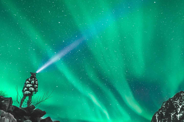 Ab Tromsø: Minibus-Tour auf den Spuren der Polarlichter