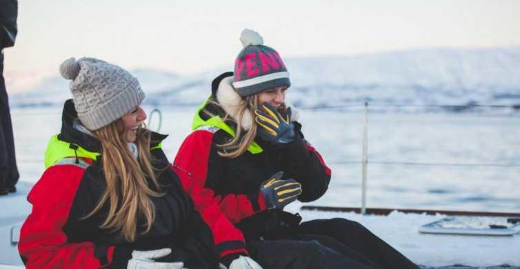 Tromsø: Arctic Sailing Safari