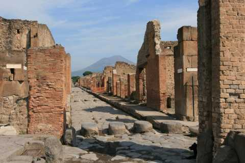 From Naples: Day Trip to Pompeii