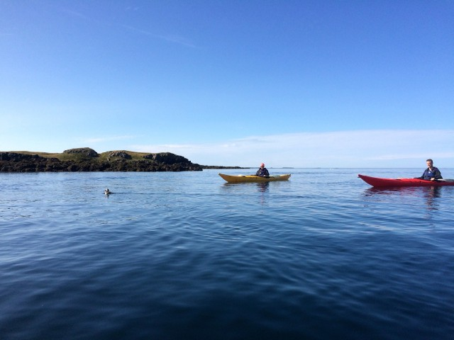 Stykkishólmur: 2-Hour Sea Kayak Tour
