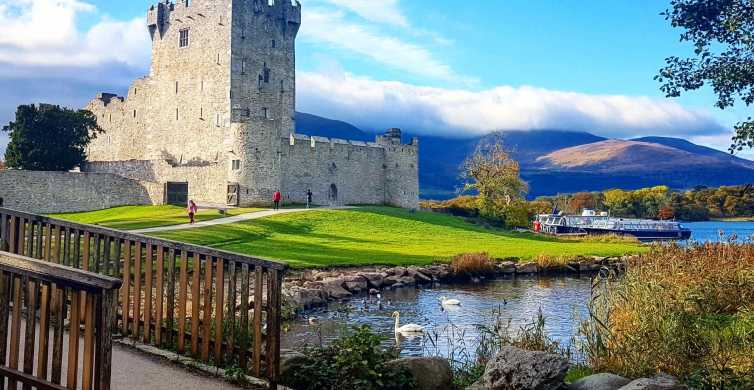 Killarney on Horse & Carriage: 1-Hour Jaunting Car Tour