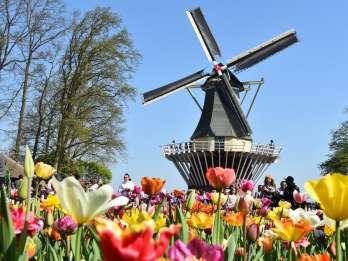 Ab Den Haag: Keukenhof und Blumenfelder