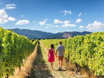 Von San Francisco: 2-Day Muir Woods & Wine Tasting Tour