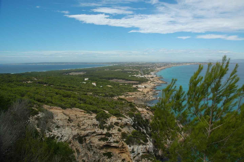 Ab Ibiza: Geführte Inseltour nach Formentera