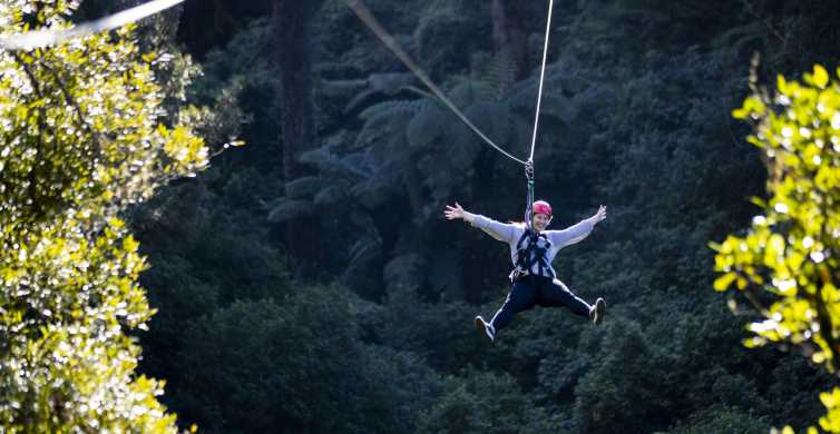Rotorua: Ultimate Zipline Forest Canopy Tour