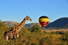 Pilanesberg, Sun City e Parque Aquático Valley of Waves