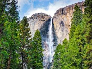 Ab San Francisco: Besuch des Yosemite Nationalparks
