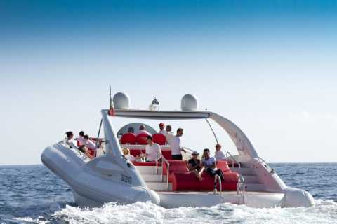 3 Hour Cruise On The World's Largest Rib Boat To See Whales