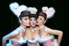 Bangkok: Ingresso Espetáculo Calypso Cabaret
