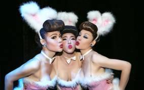 Bangkok Calypso Cabaret Show Admission Ticket