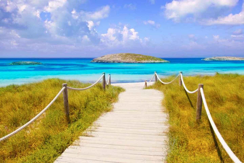 Ab Ibiza: Fährfahrt nach Formentera und zurück an einem Tag