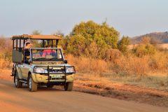 Pilanesberg: Safári de 1 Dia em Grupo com Visita a Sun City